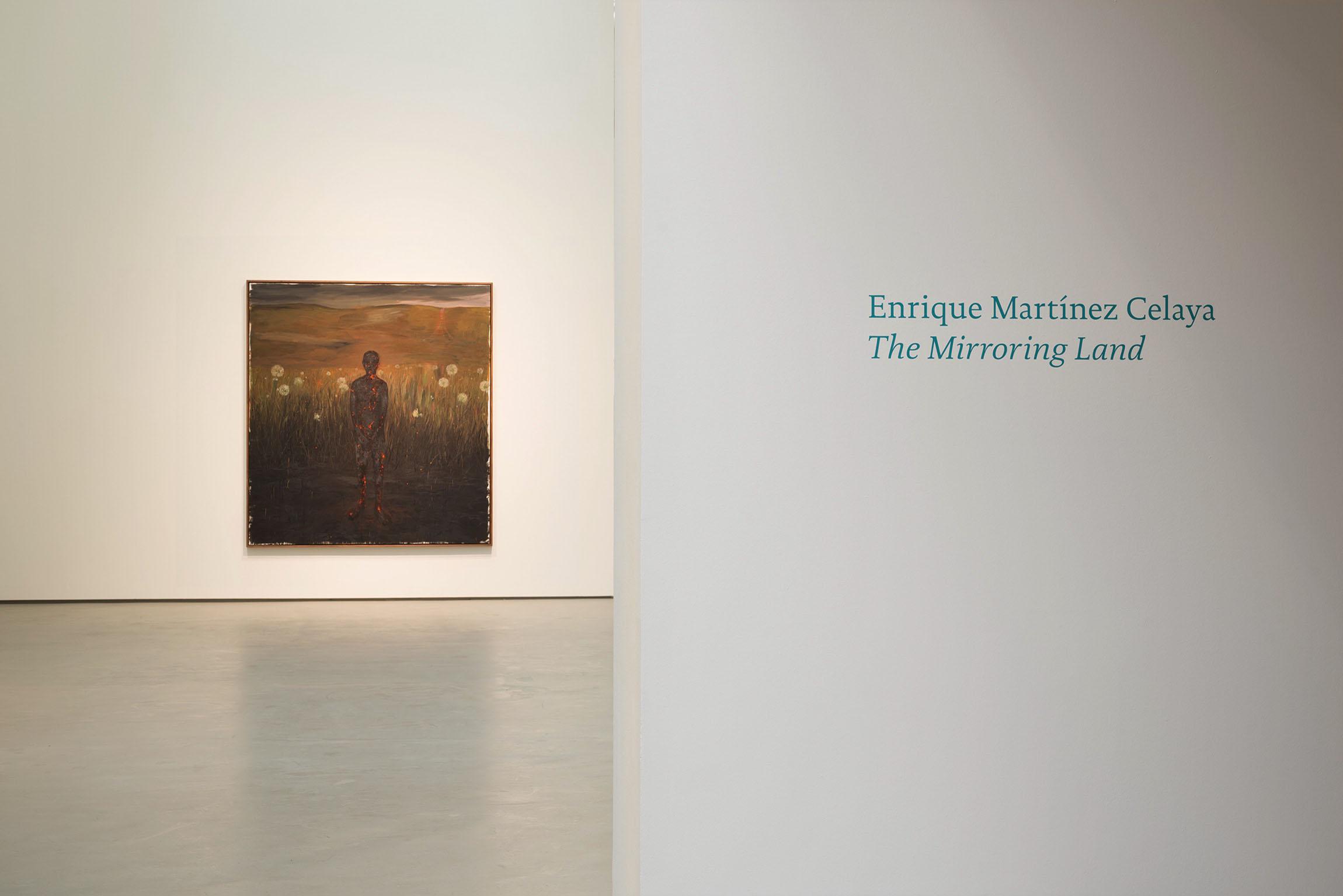 2017 Enrique Martínez Celaya The Mirroring Land