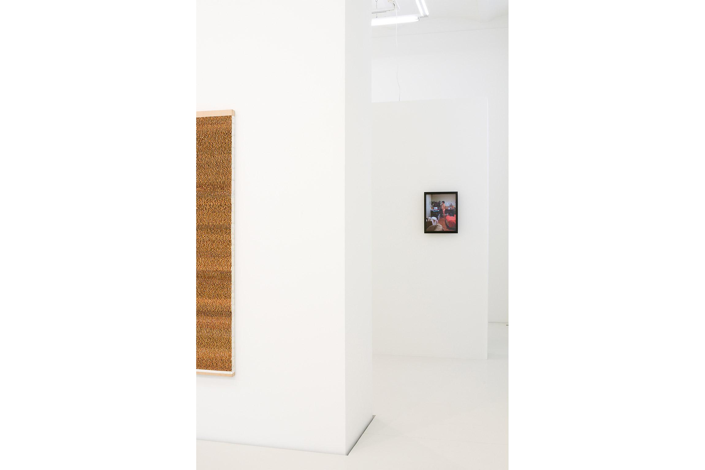 Danica Phelps Galerie Judin